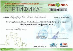 """Сертификат """"Ветеринарной нефрологии"""""""